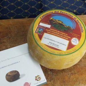 grandi-formaggi-pecorino-farindola1