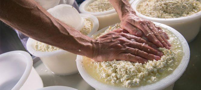 La produzione del formaggio: il caglio